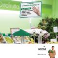 bigstar2_distributori_guanti_ortofrutta_bizzarri
