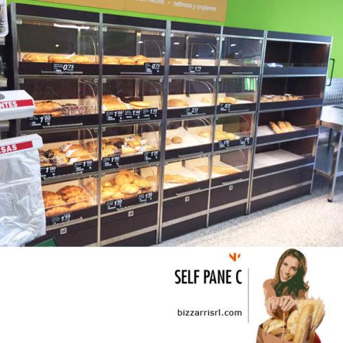 selfpaneC_selfservice_pane_bizzarri6