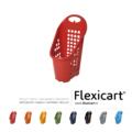 Flexicart_trolley_presentazione