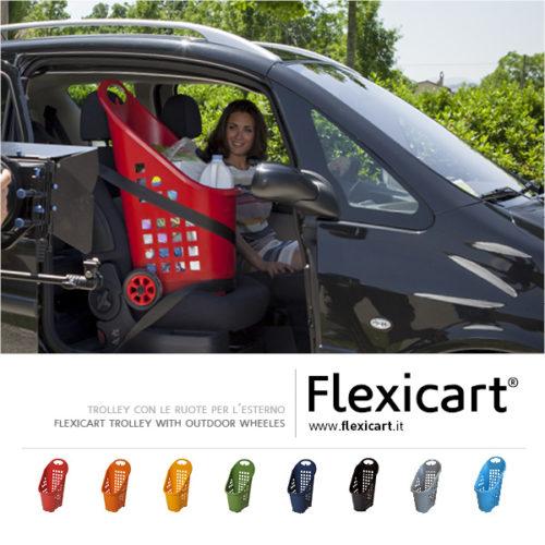 Flexicart_trolley_presentazione10