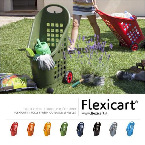 Flexicart_trolley_presentazione8