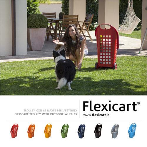Flexicart_trolley_presentazione9